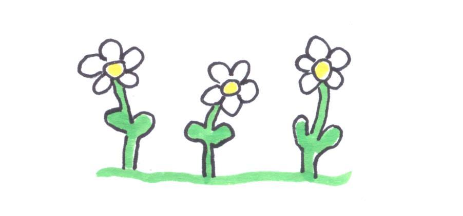 Blumen 001